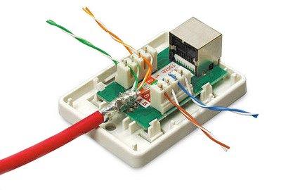 5ecf1ad07ed92 Купить розетка компьютерная, настеннная, 2 порта rj-45(8p8c), белая ...